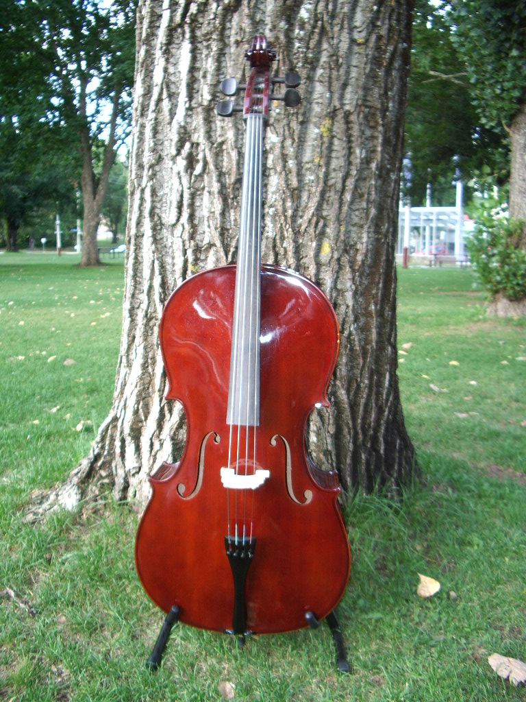 Enrico Cello