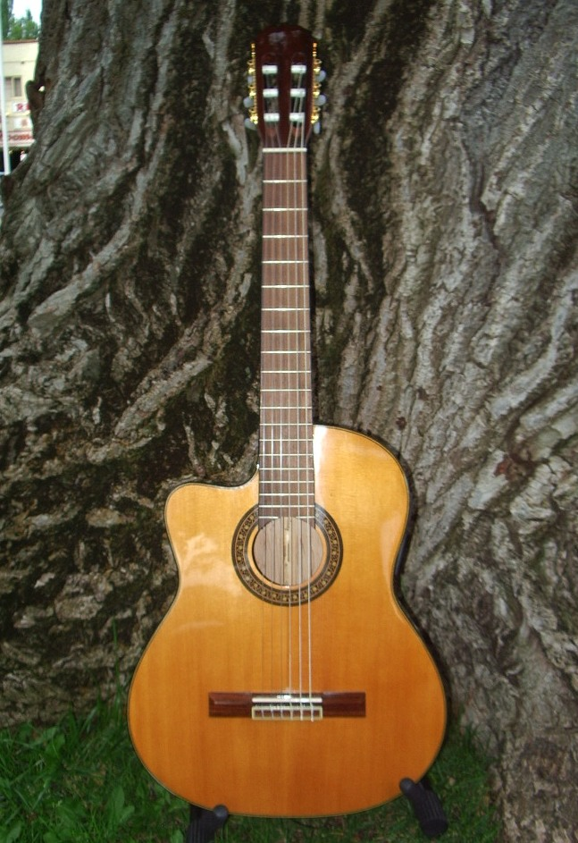 Martinez Classical Guitar with Pick-up Left Hand $439