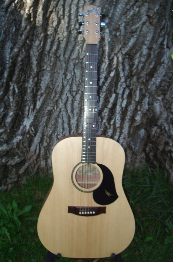 Maton M225 Acoustic Guitar $899