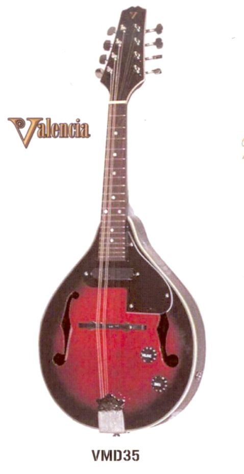 Valencia Mandolin with Pickup (VMD35) $199