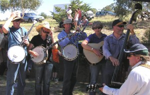 Numeralla Plunkers performing bluegrass