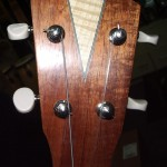 Tenor Uke with Curly Maple detailing