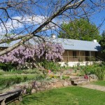 A Feast of Poetry to be held at The Raglan Gallery & Culural Centre